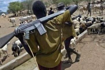 Gunmen kill 20 in Plateau village