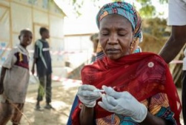Cholera kills 48 in Borno