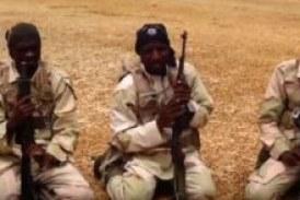 Boko Haram attacks two communities, burns down houses in Borno