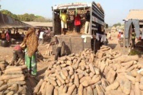Nigeria not threatened by food insufficiency