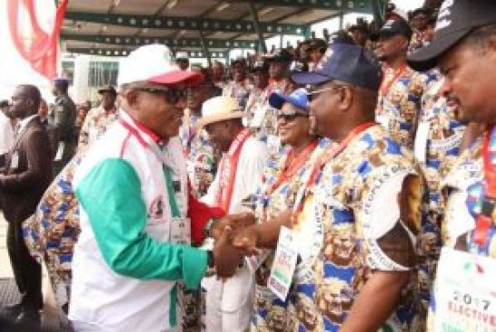 Unity list sweeps all: Uche Secondus elected PDP chairman